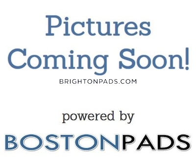 Brighton 3 Beds 1 Bath Boston - $2,800