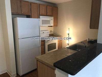 Dorchester 2 Beds 2 Baths Boston - $2,850