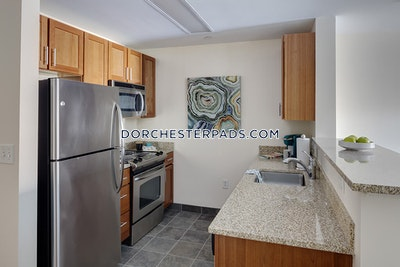 Dorchester Apartment for rent Studio 1 Bath Boston - $1,967